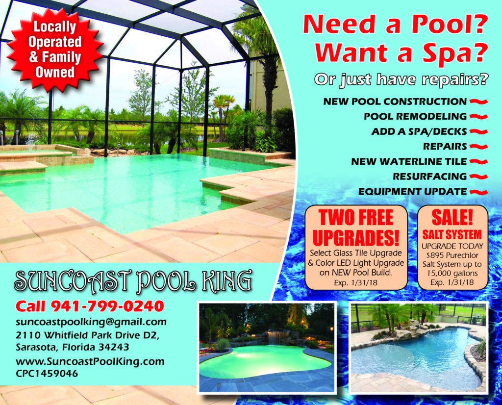 view our magazine ad pool service ad10 pool
